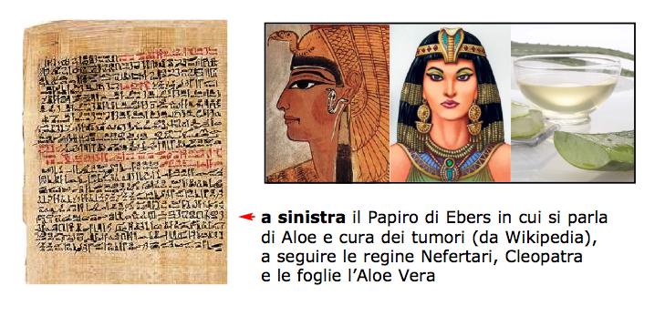 box Papiro ebers