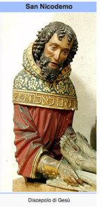 Aloe, la pianta che curò le ferite di Gesù. Dal Vangelo secondo Giovanni…